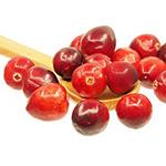 Cranberry-Früchte